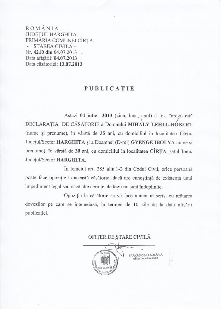 publicatie_04.07.2013